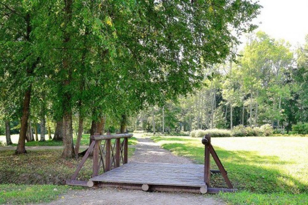 Eistynuos projektu Juzefovys muižys parka i folklorys kūpu atpazeistameibys veicynuošonai