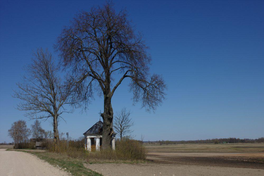 Ceļmolu krysti Latgolā – daļa nu Latvejis kulturys montuojuma