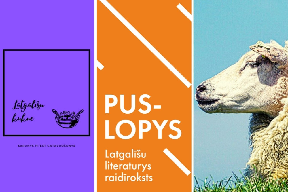 Kaidus raidīrokstus var klauseitīs latgaliski?